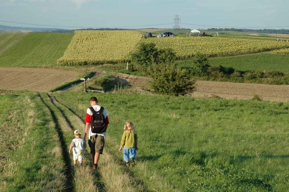 Wandern mit dem Turnverein Neulengbach