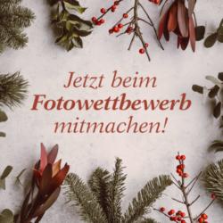 Aus Purzelbaum wird Weihnachtstraum